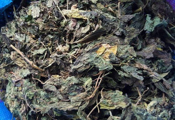 Brennnessel Blätter grob